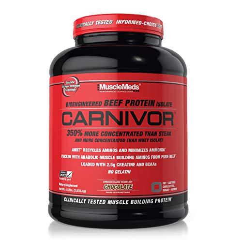 SPORTS NUTRITION SOURCE Musclemeds Carnivor Klinisch getestet 100% Rindfleisch Eiweiß Isolat Pulver, Premium Proteinpulver schokolade 56 portionen, 2038,4 g
