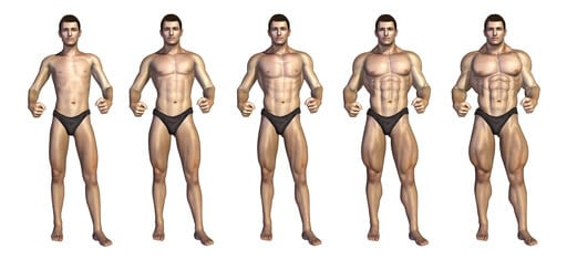Weight Gainer 5 Stadien des Muskelzuwachses