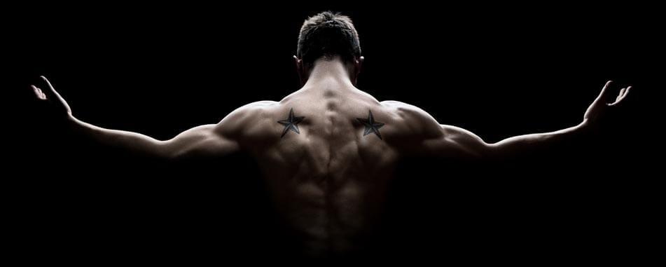 whey-protein-info-header
