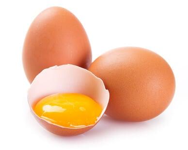 Egg Protein Kraftquelle Hühnerei