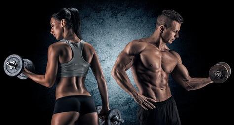 proteine bei muskelaufbau und diaet