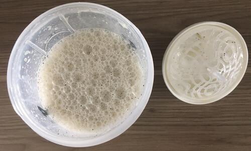 bodylab24-cookies-cream-geloest-im-shaker