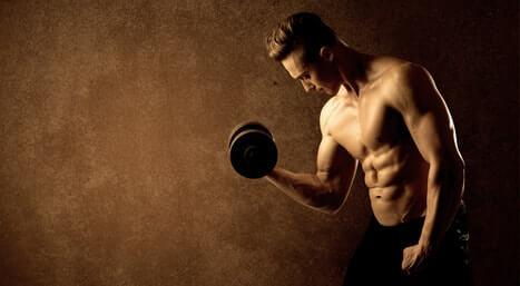 muskelaufbau muskelerhalt mit protein