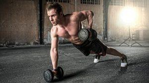 muskelaufbau und fettverlust