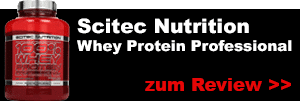 scitec nutrition whey protein professional testbericht test review