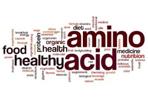 EAA - Essentielle Aminosäure