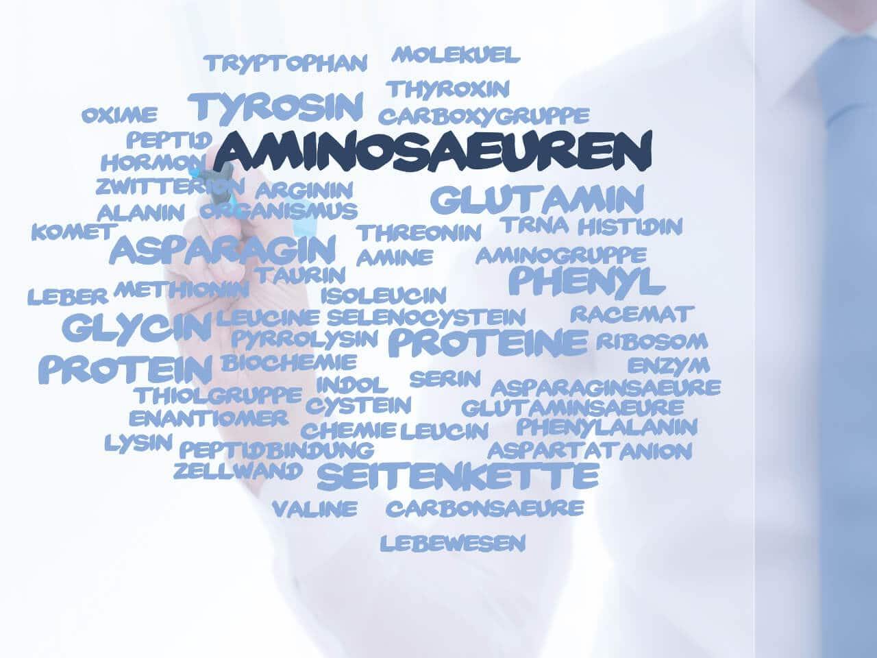 Aminosäuren in Whey protein enthalten