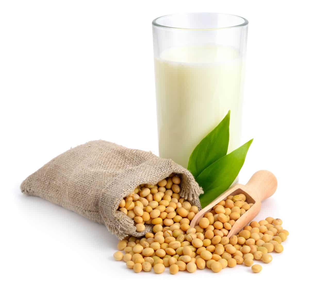 Sojaprotein Eiweißpulver aus Soja